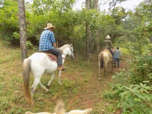 Rancho Hostal La Escondida Eco Park, Bed & Breakfast  Teopisca - big - 25