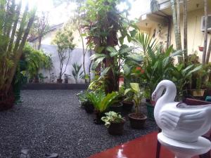 Mia's Villa