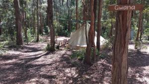 Elebanah Luxury Camping