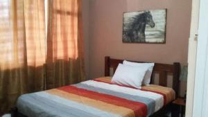 Hostel Vicky, Penziony  Turrialba - big - 3