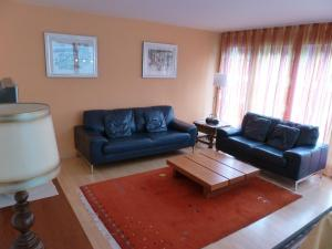 Apartment Surselva Park, Apartmanok  Flims - big - 15