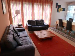 Apartment Surselva Park, Apartmanok  Flims - big - 3