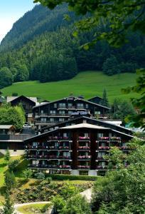 Le Petit Dru Hotel