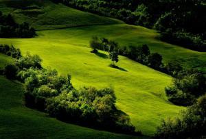 obrázek - Podere Bellaria