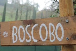 BoscoBo