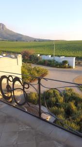 Dieu Donne, Guest houses  Stellenbosch - big - 19