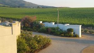 Dieu Donne, Guest houses  Stellenbosch - big - 17