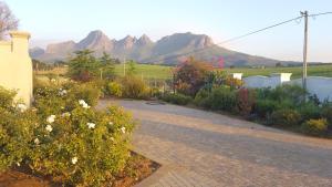 Dieu Donne, Guest houses  Stellenbosch - big - 14