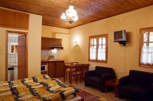 Epavli Antonis, Apartmány  Konitsa - big - 7