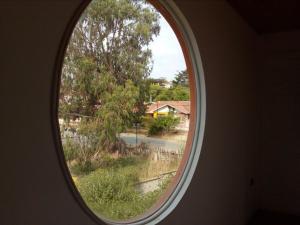 Hostal Mi Casa, Guest houses  Algarrobo - big - 16