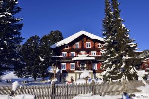 Ferienhaus Chalet Riedji
