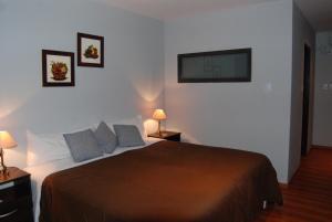Suter Petit Hotel, Hotels  San Rafael - big - 89