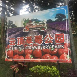 Genting Highlands Strawberry Home Vacation