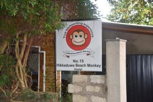 Hikkaduwa Beach Monkey