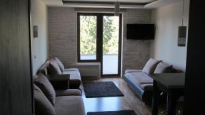 Apartments Vanja i Vrh, Ferienwohnungen  Kopaonik - big - 36