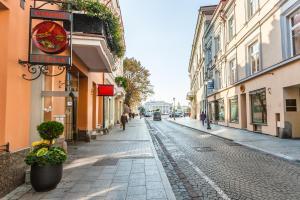Didžioji Street Apartments, Apartmány  Vilnius - big - 43