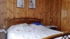 Guest House Galinin Dom, Pensionen  Suzdal - big - 9
