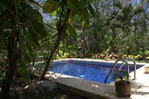 Luxury House 8 pax, P. Aventuras Golf, by KVR