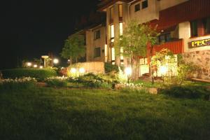 Курортный отель Перлина Карпат - фото 5