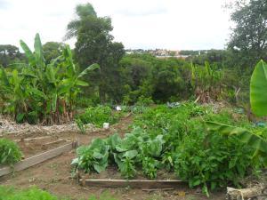 Rancho Assel, Загородные дома  Campina Grande do Sul - big - 33