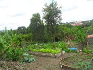 Rancho Assel, Загородные дома  Campina Grande do Sul - big - 35