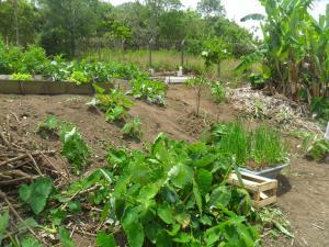 Rancho Assel, Загородные дома  Campina Grande do Sul - big - 37