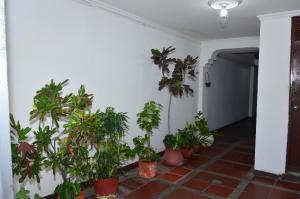 Guest House Bernarda