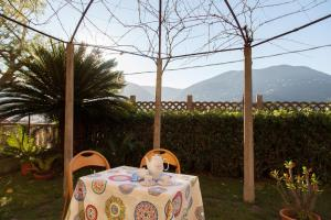 The Turtles Garden, Holiday homes  La Spezia - big - 12
