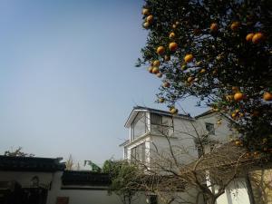 Pure-Land Villa, Ubytování v soukromí  Suzhou - big - 31