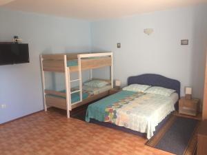Apartments Palinic