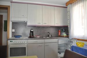 Apartmenthaus Holiday, Ferienwohnungen  Saas-Fee - big - 46