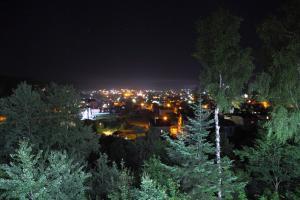 FAVAR Carpathians, Apartments  Skhidnitsa - big - 133