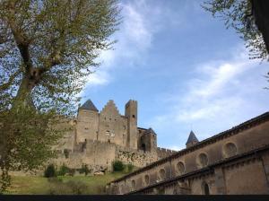 Cité Park, Appartamenti  Carcassonne - big - 4