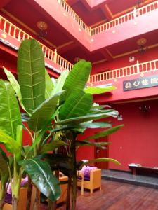 Lijiang Maya Theme Hotel