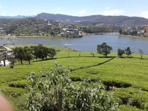 Niwahana Lake View, Privatzimmer  Nuwara Eliya - big - 23