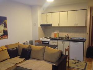 Apartment Emir