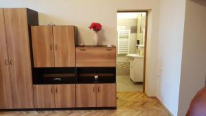 obrázek - Satu Mare Apartments