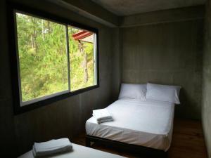 Coffee Heritage House and Hostel, Ostelli  Sagada - big - 5