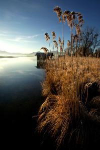 Zum Fischer am See, Pensionen  Prien am Chiemsee - big - 28