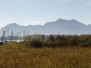 Zum Fischer am See, Pensionen  Prien am Chiemsee - big - 26