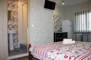 Elena Guest House, Penziony  Adler - big - 53