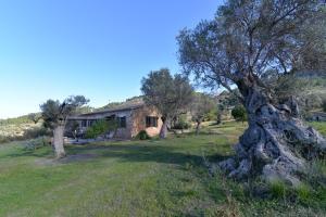 Villa Vidal Deià, Holiday homes  Deia - big - 12