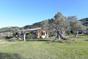 Villa Vidal Deià, Holiday homes  Deia - big - 5