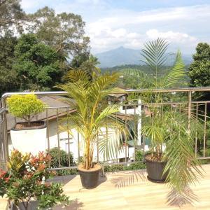 Nook Rest, Magánszállások  Kandy - big - 13