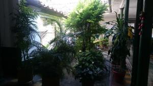 Residencia Escorial