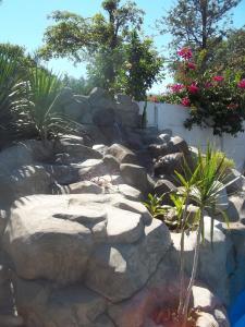 El Jardin Colonial