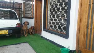 Lindo apartamento centro de Bogota