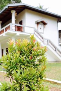 Chinese Garden Hotel
