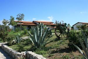 Agriturismo Ninea, Hétvégi házak  Ricadi - big - 13