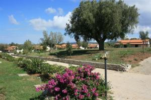 Agriturismo Ninea, Hétvégi házak  Ricadi - big - 12